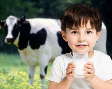 boy with milk glass cow, drinking milk