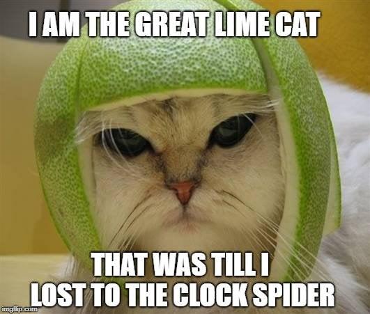 LIME CAT MEME