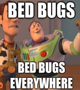 bed bugs meme