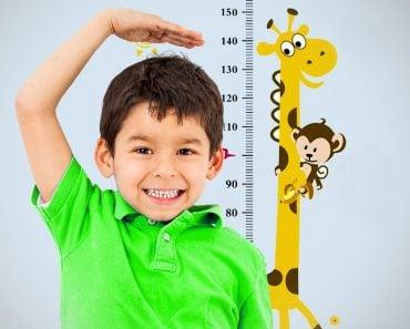 grow, height measurement, cute boy,