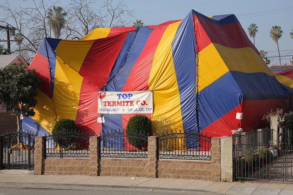 tent fumigation