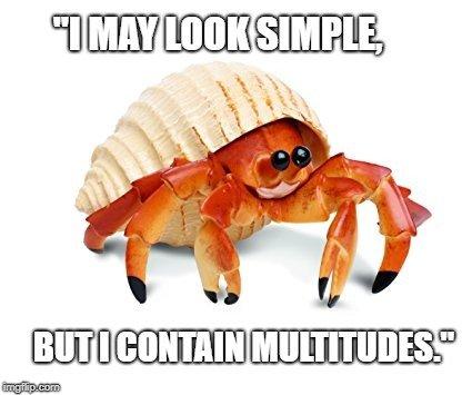 I may look simple meme