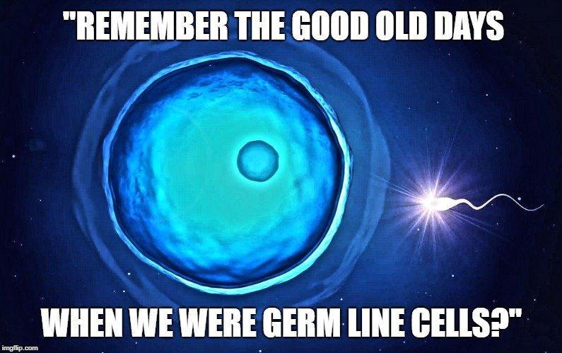Remember the good old days meme