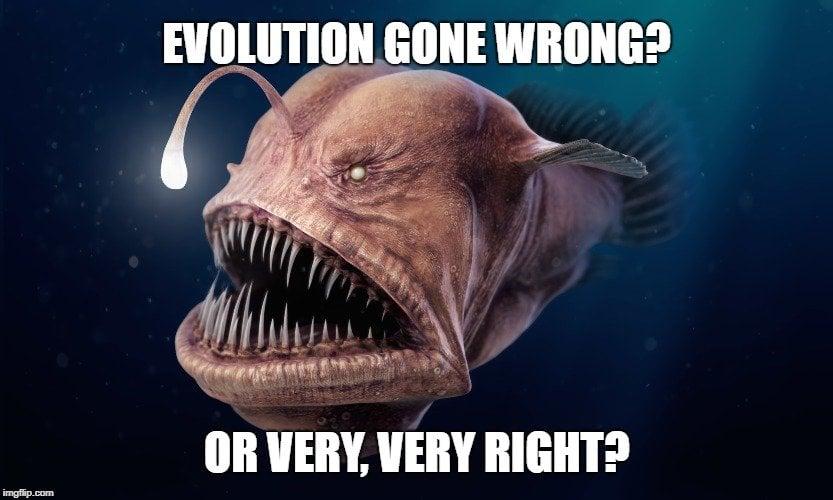 Evolution gone wrong meme