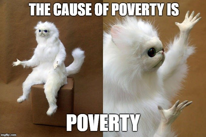 THE CAUSE OF POVERTY IS; POVERTY meme