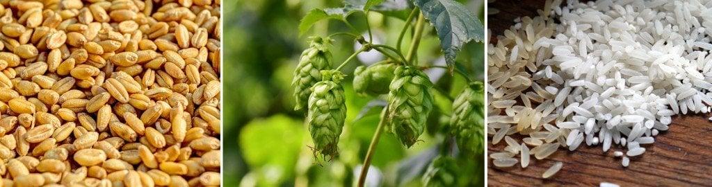 raw material beer
