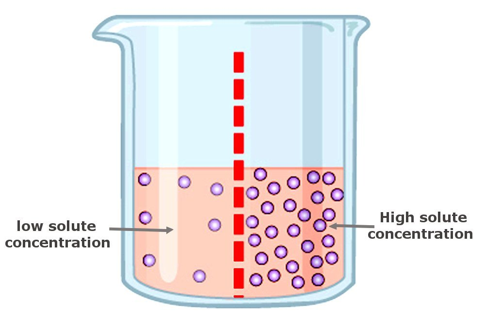 water reverse osmosis solute