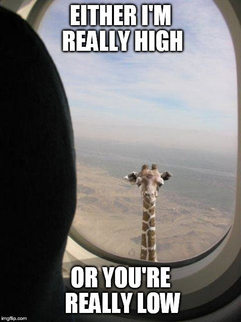 EITHER I'M REALLY HIGH; OR YOU'RE REALLY LOW meme