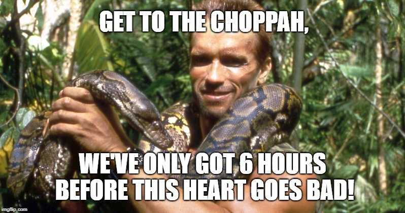 Get to the choppah meme