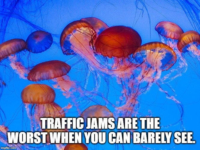 Traffic jams are the worst when you can barely see meme