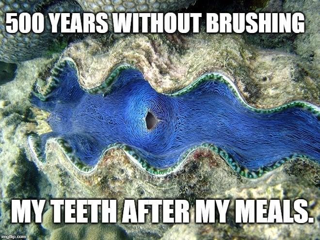 500 years without brushing meme