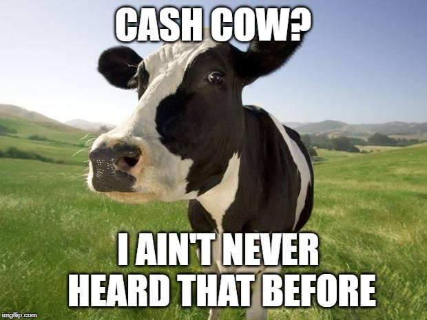 CASH COW I AIN'T NEVER HEARD THAT BEFORE meme