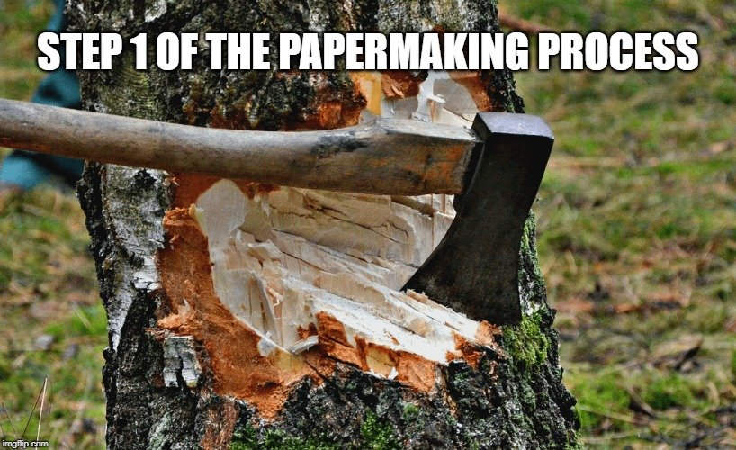 Step 1 of the Papermaking Process meme
