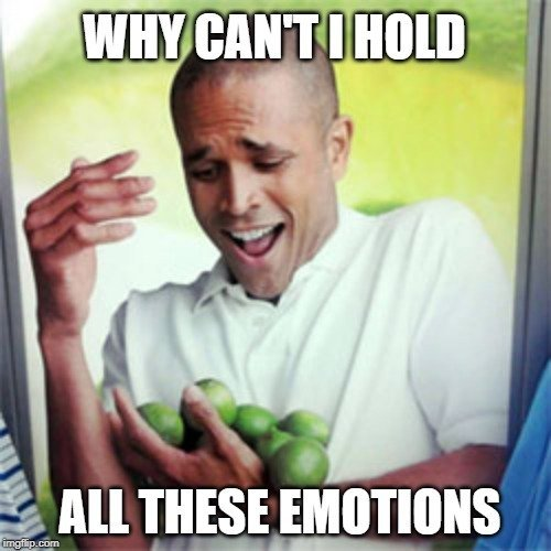WHY CAN'T I HOLD; ALL THESE EMOTIONS meme