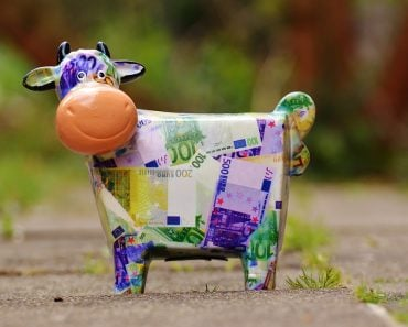 cash cow save