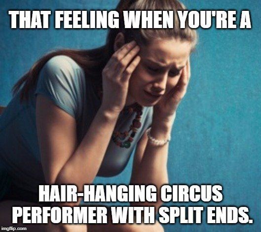 hair-hanging circus performer with split ends meme