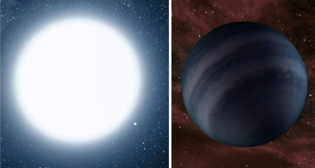 red dwarf white dwarf and black dwarf