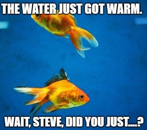 The water just got warm meme