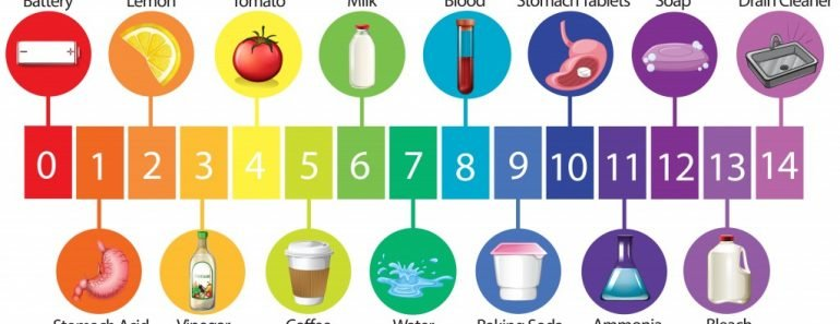 An Education Poster of pH Scale illustration - Vector(BlueRingMedia)s