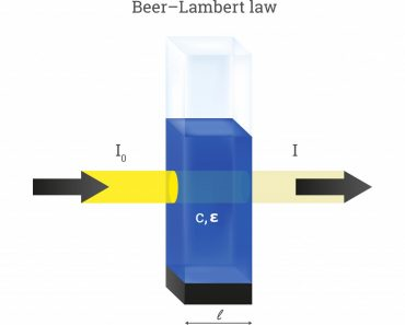 Vector scheme of Beer Lambert law(petrroudny43)1s