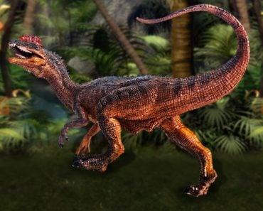dinosaur , Dilophosaurus(kamomeen)s copy
