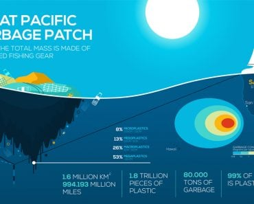 Global environmental problems infographics(Pro_Vector)s
