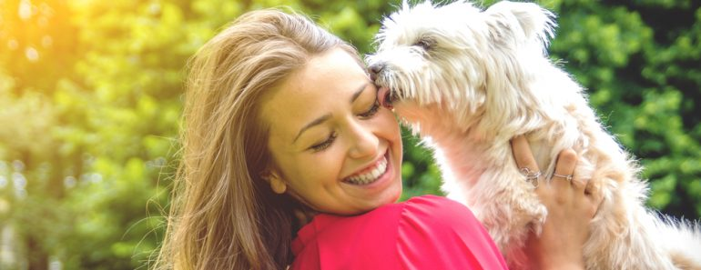 Puppy white dog licking it's owner(DavideAngelini)S