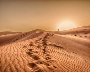 Sunset in the desert, Sunset in the desert in Dubai UAE(wessam Noufal)S