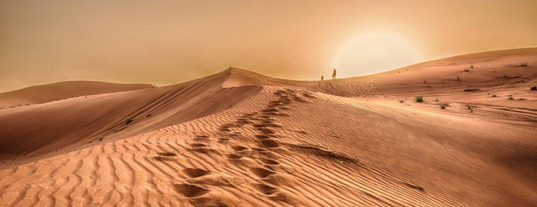Sunset in the desert, Sunset in the desert in Dubai UAE(wessam Noufal)S