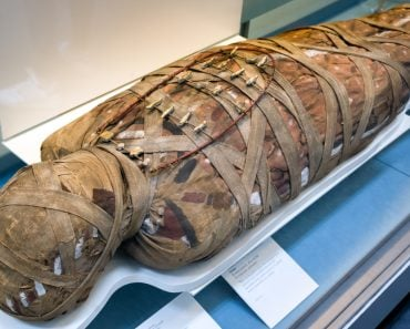 Do Mummies Carry Ancient Pathogens(Jaroslav Moravcik)S