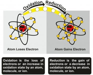 Oxidation and Reduction Process infographic diagram(Inna Bigun)s