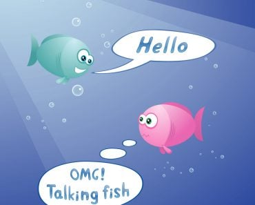 cute fishes are talking underwater(dacascas)S