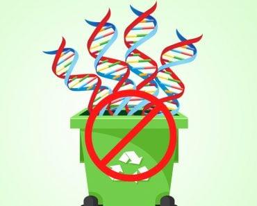 DNA junk