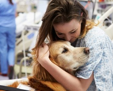 Therapy Dog Visiting Young Female Patient In Hospital(Monkey Business Images)s
