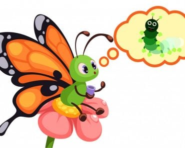 butterfly is remembering it's caterpillar stage1