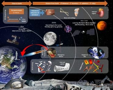 3D bioprinting for space pillars
