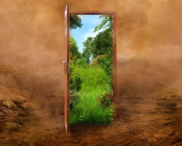 Open door to the new summer landscape world, green nature environment against desert background(Corona Borealis Studio)s