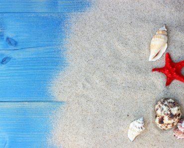 Summer background with sea shells and red star with sand on blue wooden planks. Copy space(panna-yulka)s