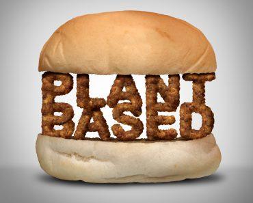 Plant,Based,Burger,As,Fake,Meat,Or,Vegan,Hamburger,Representing