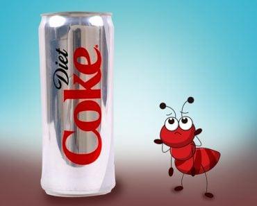 Ants Like Diet Soda