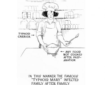 , Who Was Typhoid Mary And How Did She Spread Typhoid?, Science ABC, Science ABC
