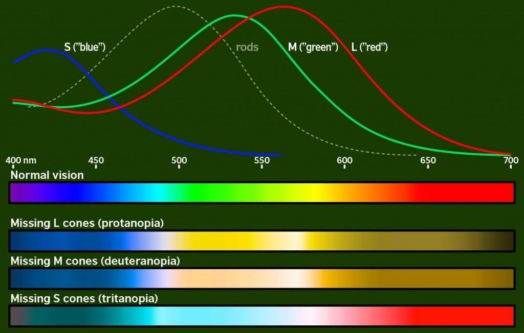 cb-spectra-bars