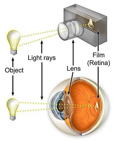 camera and eye