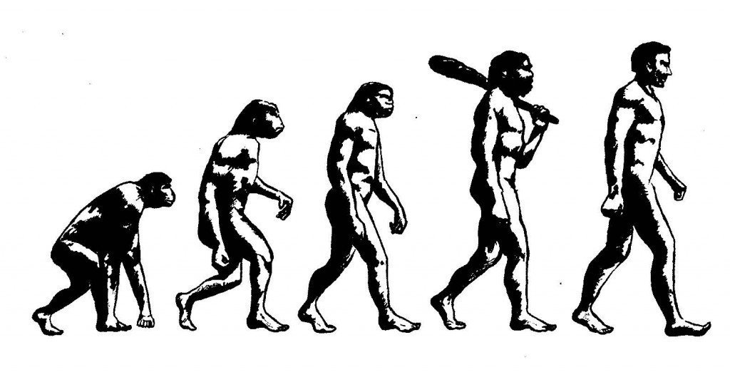The way we evolved