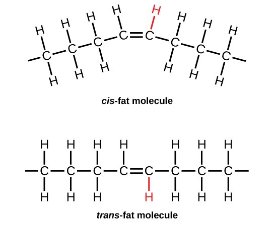 cis and trans fat