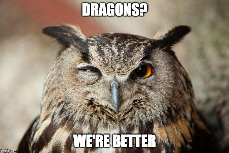 Owl Winking Meme