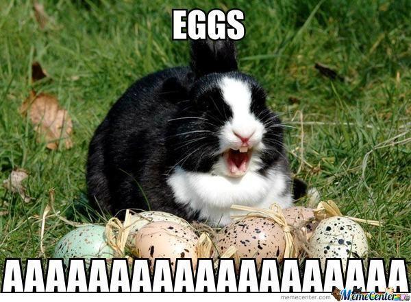 eggs_o_941827
