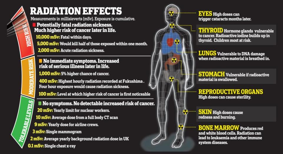 What all effects radiation can have your body Credit: georgetown.edu