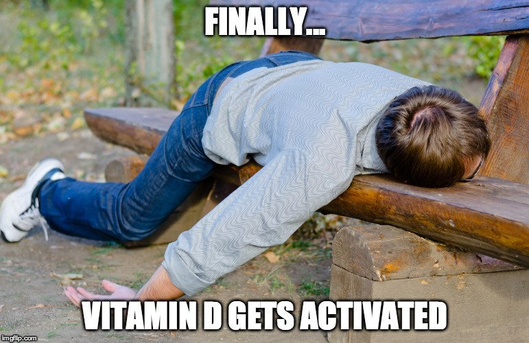 Drunk Man on Bench Meme