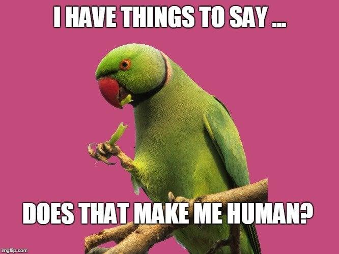 Parrot MEME
